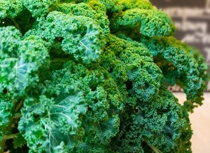 Benefits of Eating Kale That Can Improve your Health